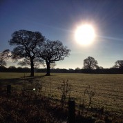 SANDBACH NDP Student's Picture Competition